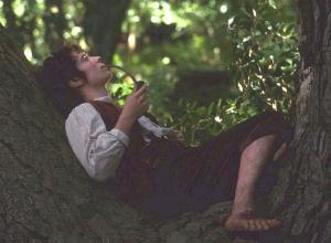 hobbit fumón y chichero, hobbit cumbiambero